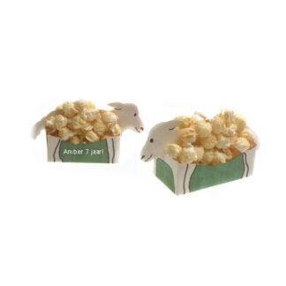 popcorn traktatie voor verjaardag of andere feestelijkheid