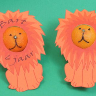 leeuwen trakatie dierentuin, gezonde traktatie